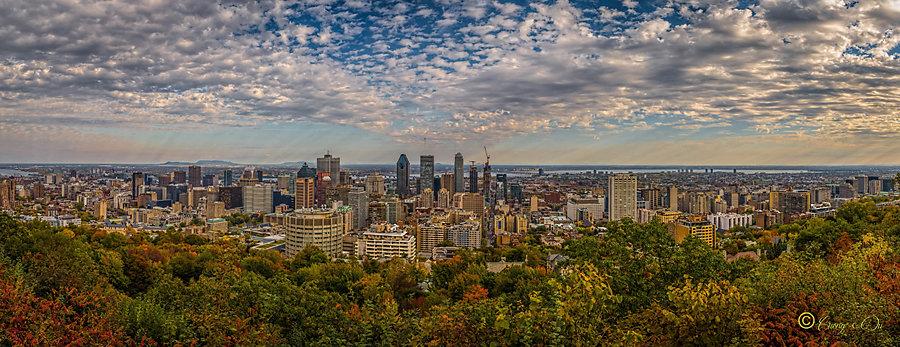 Cuong - Montréal
