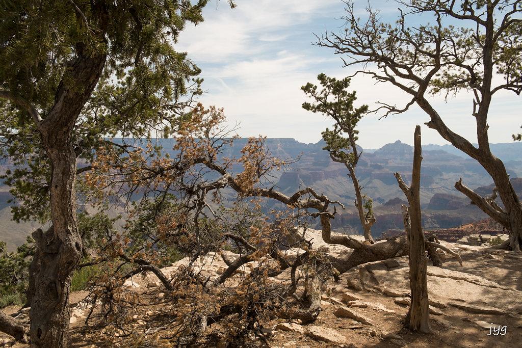 Jean-Yves - Dry canyon